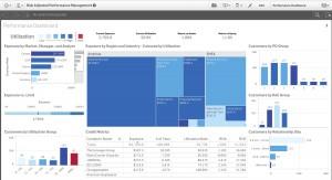 Qlik Sense_2015_Risk Adjusted Performance Mgm